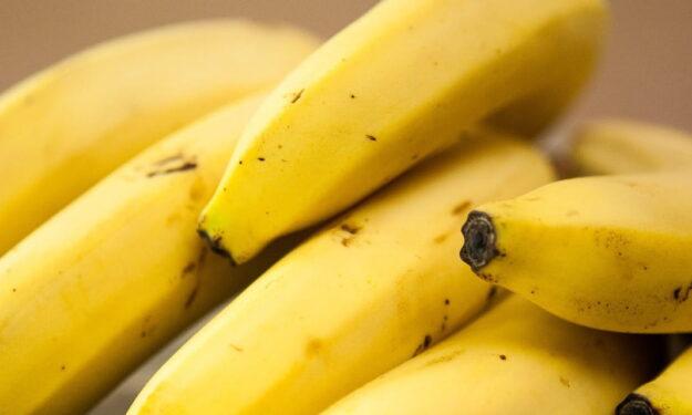 ¡Plátanos sin manchas! Consejos de Budito